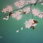 0055 Koi Fish (Carp): Cherry Blossoms / Shukou Okamoto 006