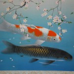 0056 Koi Fish (Carp): Cherry Blossoms / Shukou Okamoto 003