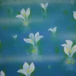 0057 Landscape Painting: Oze / Katō Tomo 006