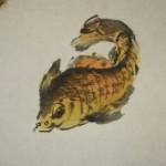 0148 Koi Fish (Carp) Painting / Yasuo Tadami 006